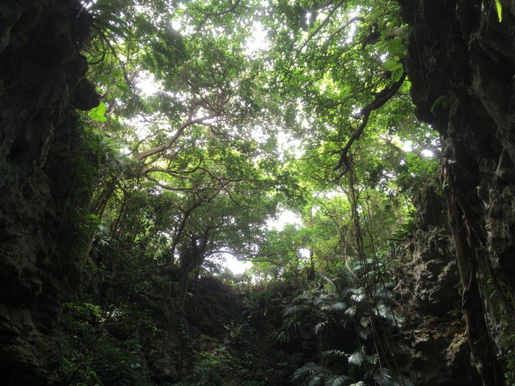久米島ヤジヤーガマ中間地点