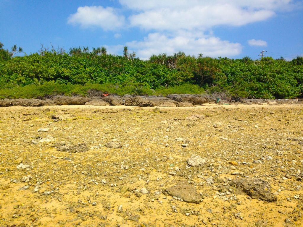 オーハ島の海岸