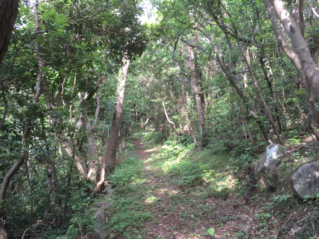 久米島一目立たない城、塩原城へ登る道。ここは遊歩道になっていて歩きやすい。