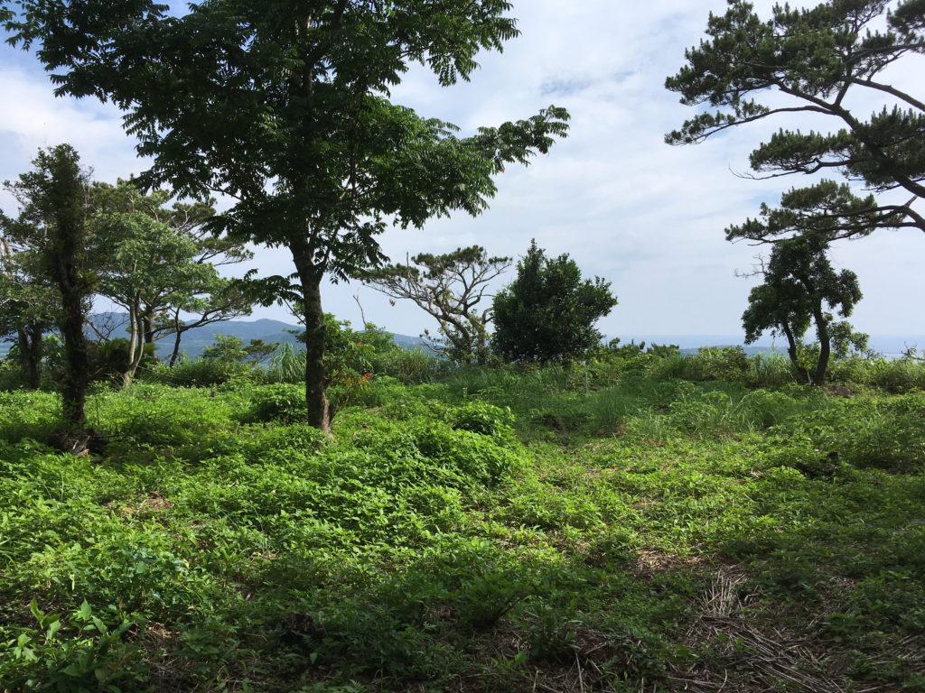 久米島一目立たない城、塩原城の頂上。鬱蒼としたジャングルを抜けると開放感のある景色に出会えます。