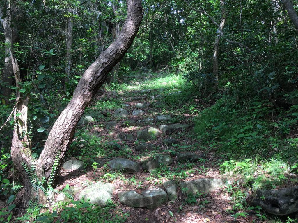 久米島一目立たない城、塩原城へ登る道。一応階段がある。