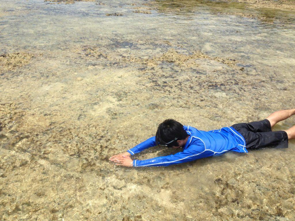 ハテの浜チャレンジ浅すぎて泳げない・・・