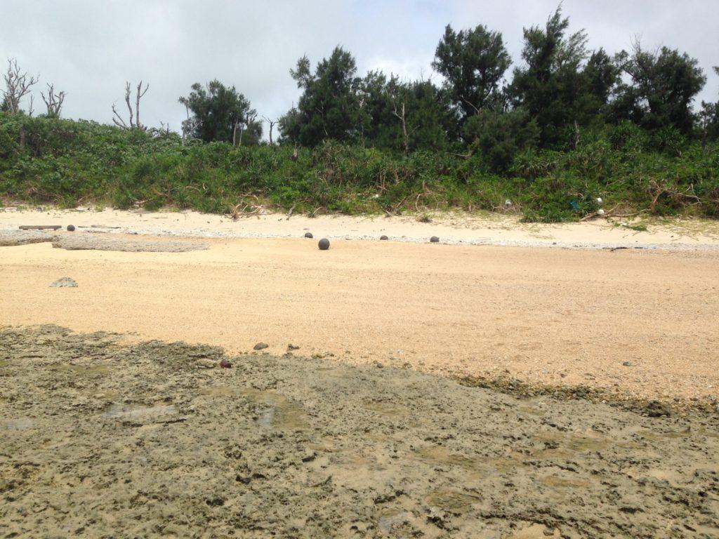 ハテの浜チャレンジのスタートの浜