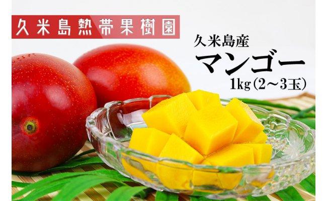 ふるさと納税返礼品の久米島産マンゴー
