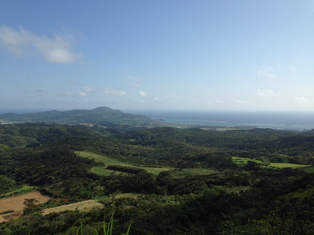 宇江城城跡からの眺め